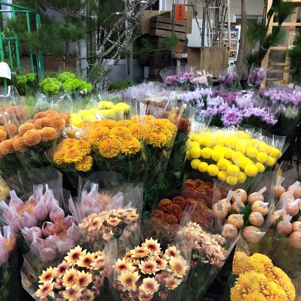 Z-Flower Design+_お正月花の仕入れ第1弾_2015