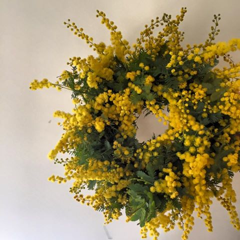 Z-Flower Design+_mimosa_wreath_gift_2016