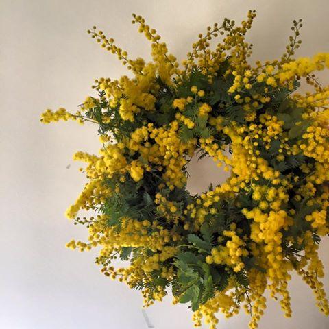 Z-Flower Design+_mimosa_wreath_gift_2016