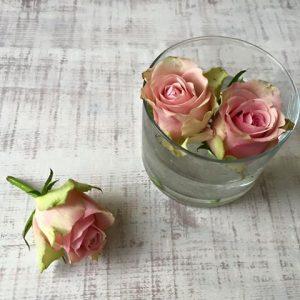 Z-Flower Design+_花のメンテナンスのこと_2016