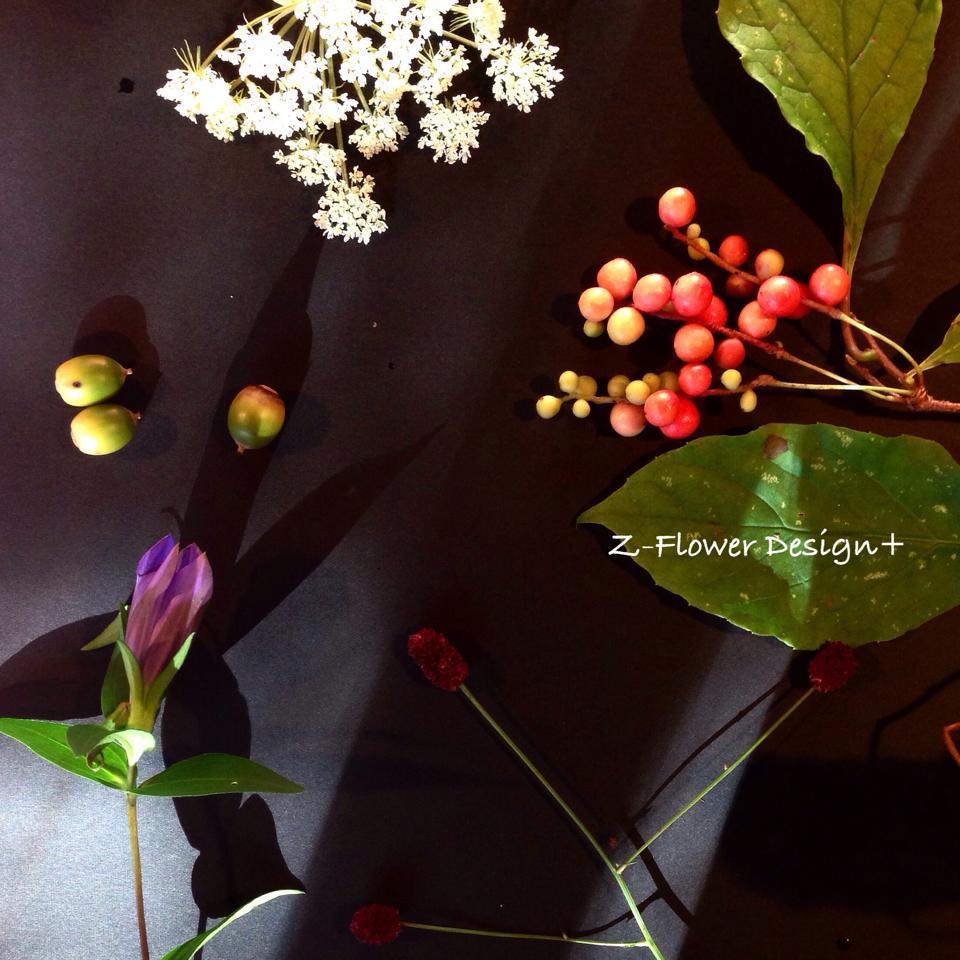 Z-Flower Design+_秋を散歩して集めてきました_2014