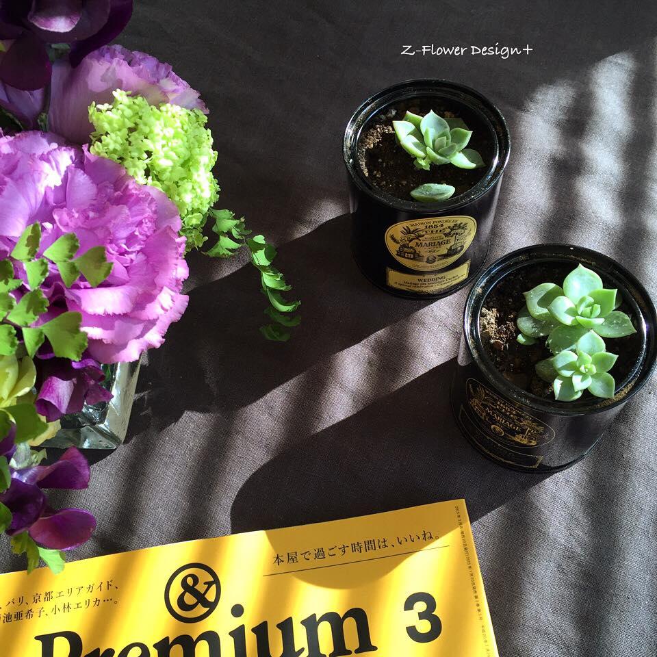 Z-Flower Design+_多肉植物を育てる_2015