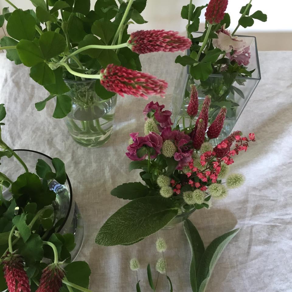 Z-Flower Design+_GWのいい天気で庭の花や緑もぐんぐん育っています_2015