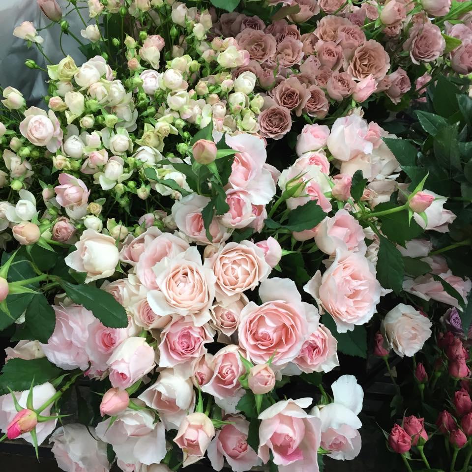 z-flower-design_%e5%86%ac%e3%81%ae%e4%b8%96%e7%94%b0%e8%b0%b7%e5%b8%82%e5%a0%b4%e3%81%af%e5%af%92%e3%81%84_2015