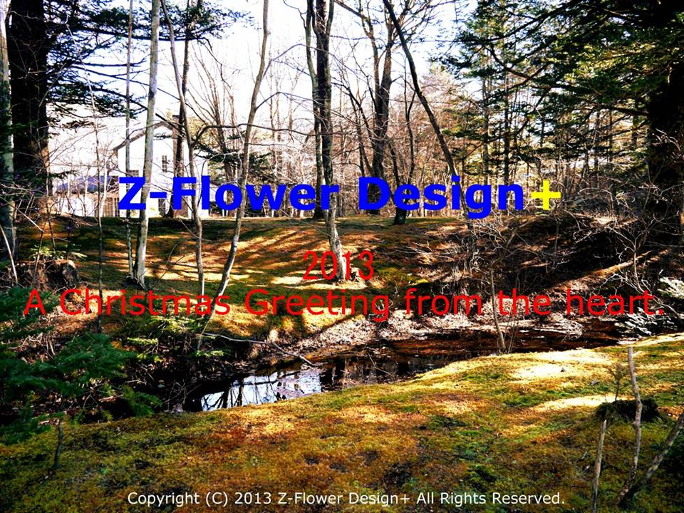 z-flower-design_xmas-greeting-from-th-heart_2013